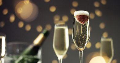 vino-fai-da-te-spumante-vendemmia-vite-vinificazione-imbottigliamento-cantina-degustazione-27