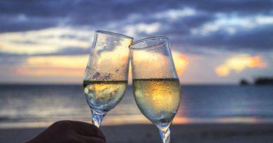 vino-fai-da-te-spumante-vendemmia-vite-vinificazione-imbottigliamento-cantina-degustazione-28