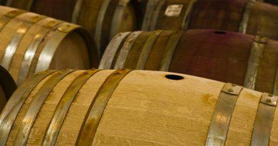 vino-fai-da-te-spumante-vendemmia-vite-vinificazione-imbottigliamento-cantina-degustazione-23