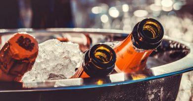 vino-fai-da-te-spumante-vendemmia-vite-vinificazione-imbottigliamento-cantina-degustazione-36