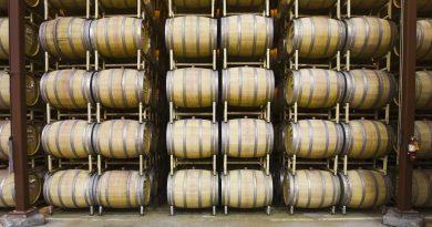 vino-fai-da-te-spumante-vendemmia-vite-vinificazione-imbottigliamento-cantina-degustazione-30