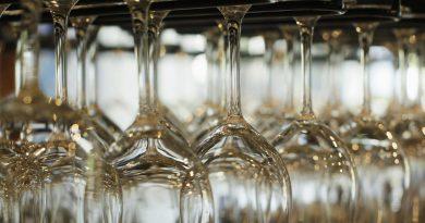 vino-fai-da-te-spumante-vendemmia-vite-vinificazione-imbottigliamento-cantina-degustazione-33